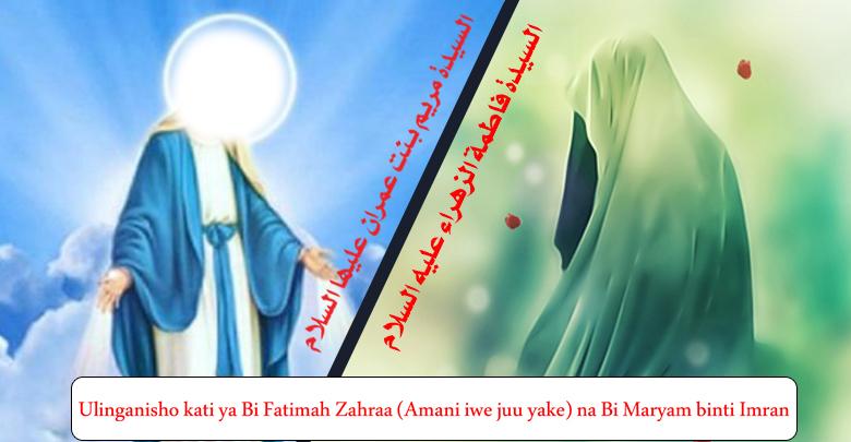 Ulinganisho kati ya Bi Fatimah Zahraa (Amani iwe juu yake) na Bi Maryam binti Imran